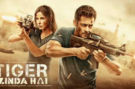 A VISUAL TREAT FOR SALMAN FANS, TIGER ZINDA HAI SATISFACTORILY ENTERTAINS YOU !!