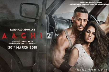 BAAGHI 2 IS A MERE STUNT SHOW. EVEN AN ARMY OF BRILLIANT ACTORS IS OF NO USE