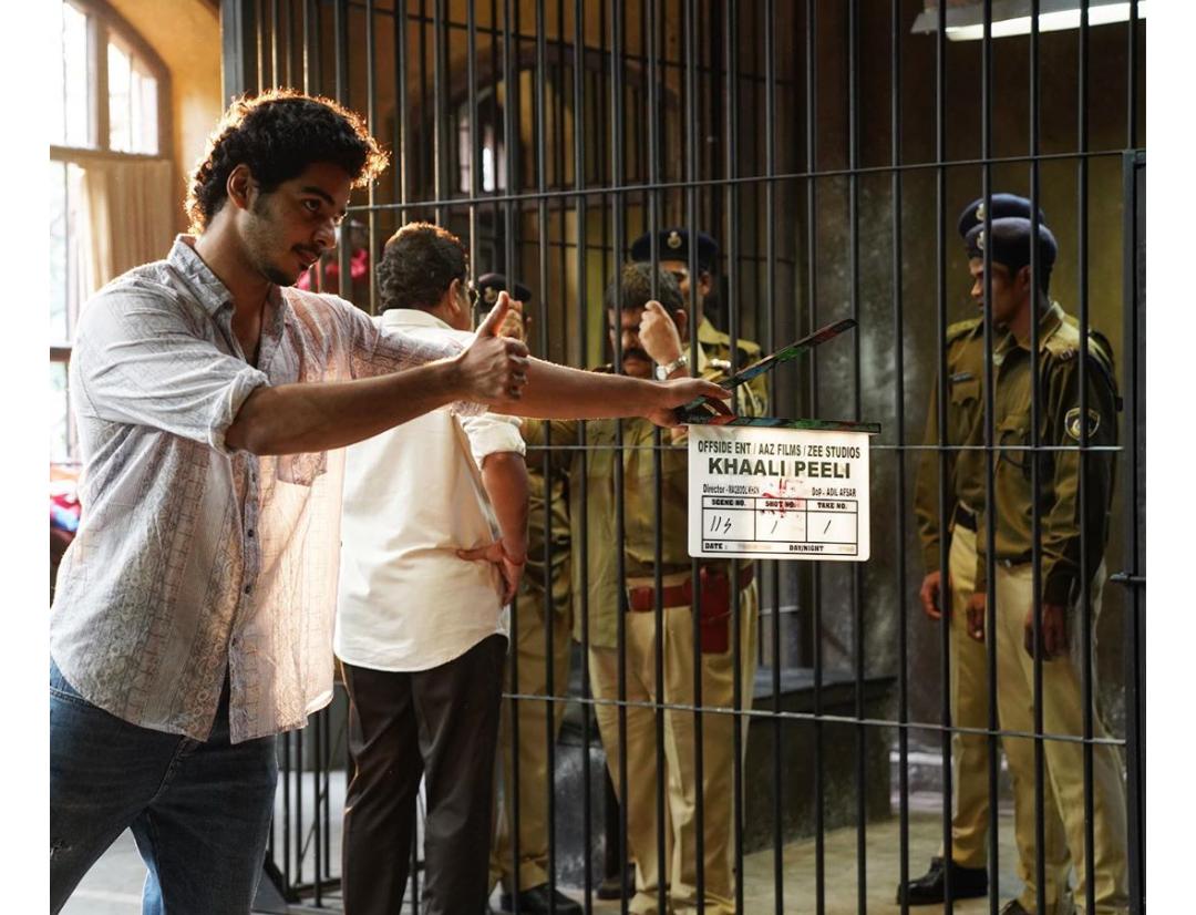 Khaali peeli, zeeplex, film, review, hindi, 2020