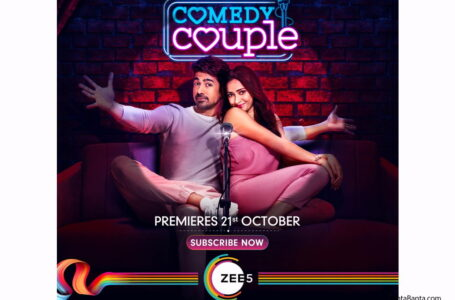 'COMEDY COUPLE' IS A DECENT ROMCOM, COULD HAVE BEEN MEATIER