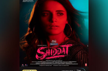 'SHIDDAT' LIKE ITS NAME TALKS OF PASSION, BUT DOESN'T JUSTIFY IN EXECUTION